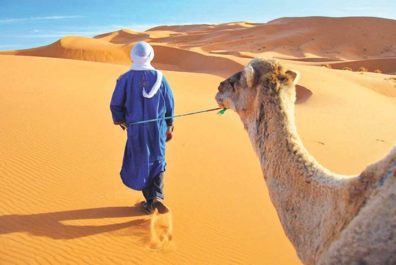 Trekk Exotic Morocco Sahara