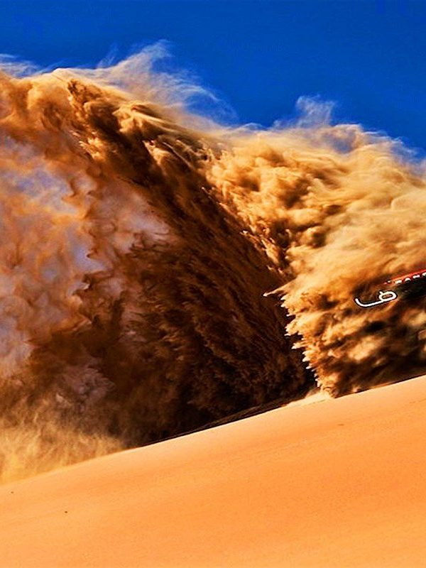 Best Abu Dhabi Desert Safari