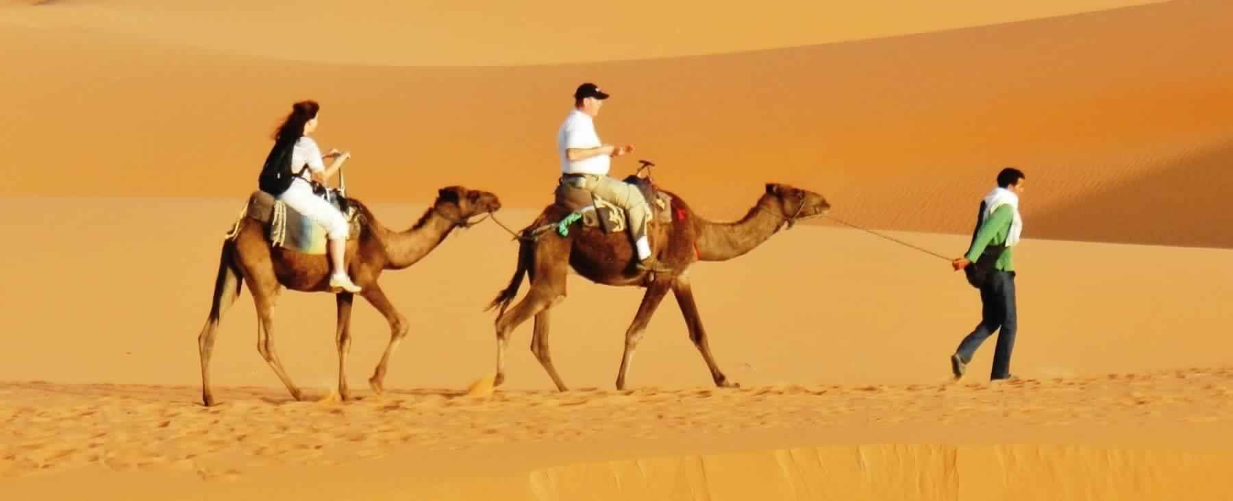 Dubai Desert Safari Tour- Camel Riding & Dune Bashing