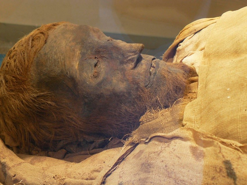 https://www.lookategypttours.com/tours/luxor-full-day-tour-mummification-luxor-museum-with-karnak-temple/